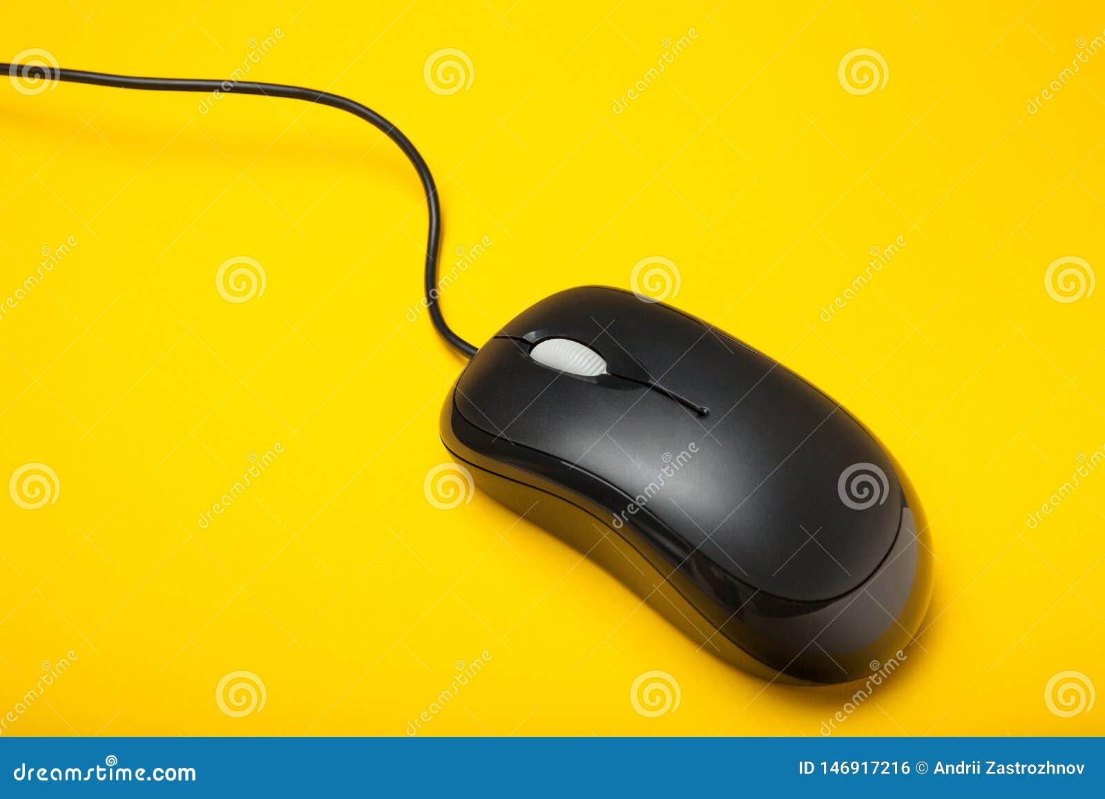 Primer, ratón del ordenador con el alambre