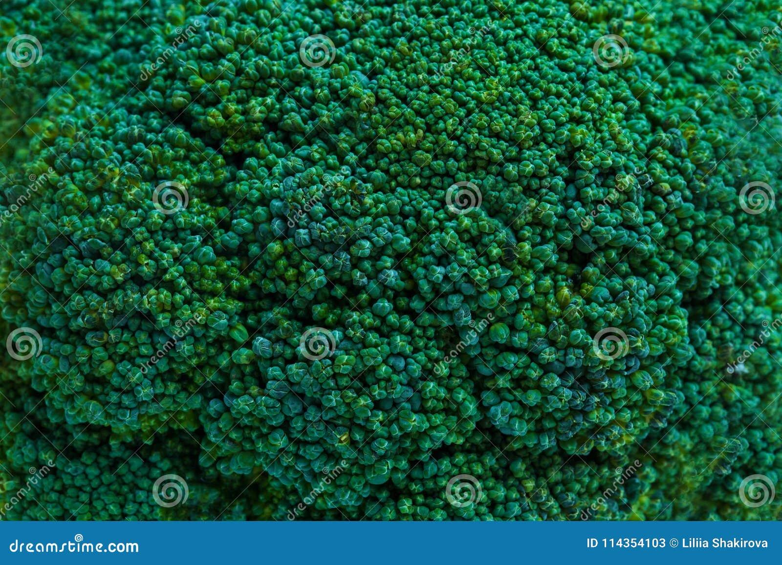 Primer, textura del bróculi Producto-vehículos frescos de vegetables