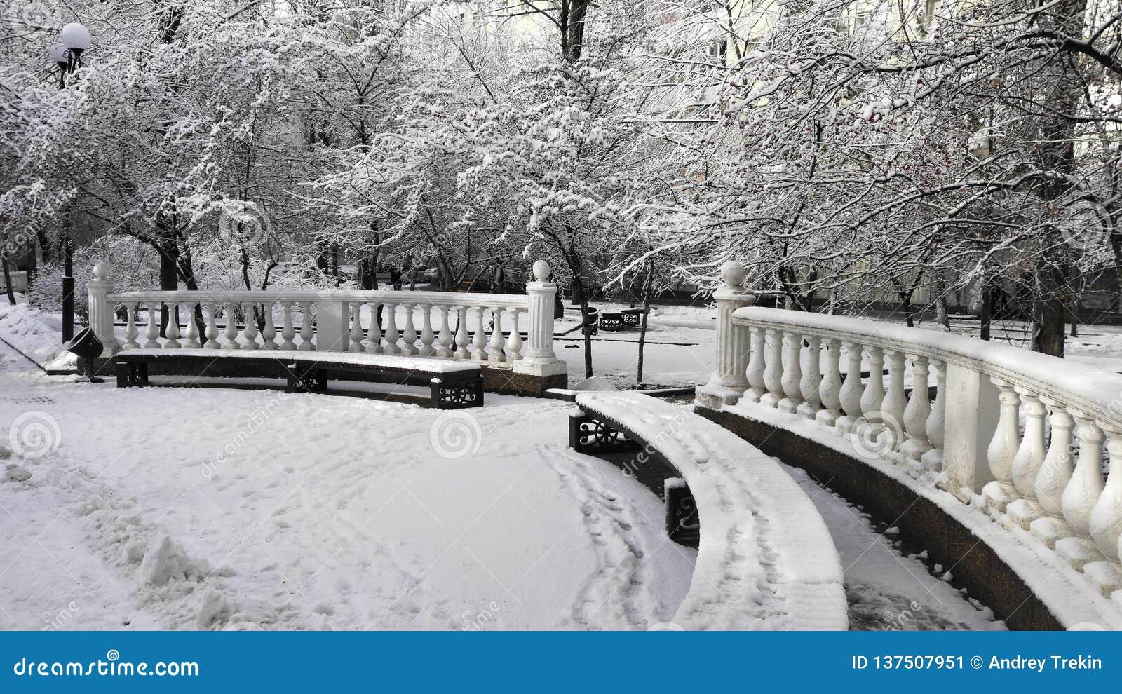 Primera nieve en el parque de la ciudad