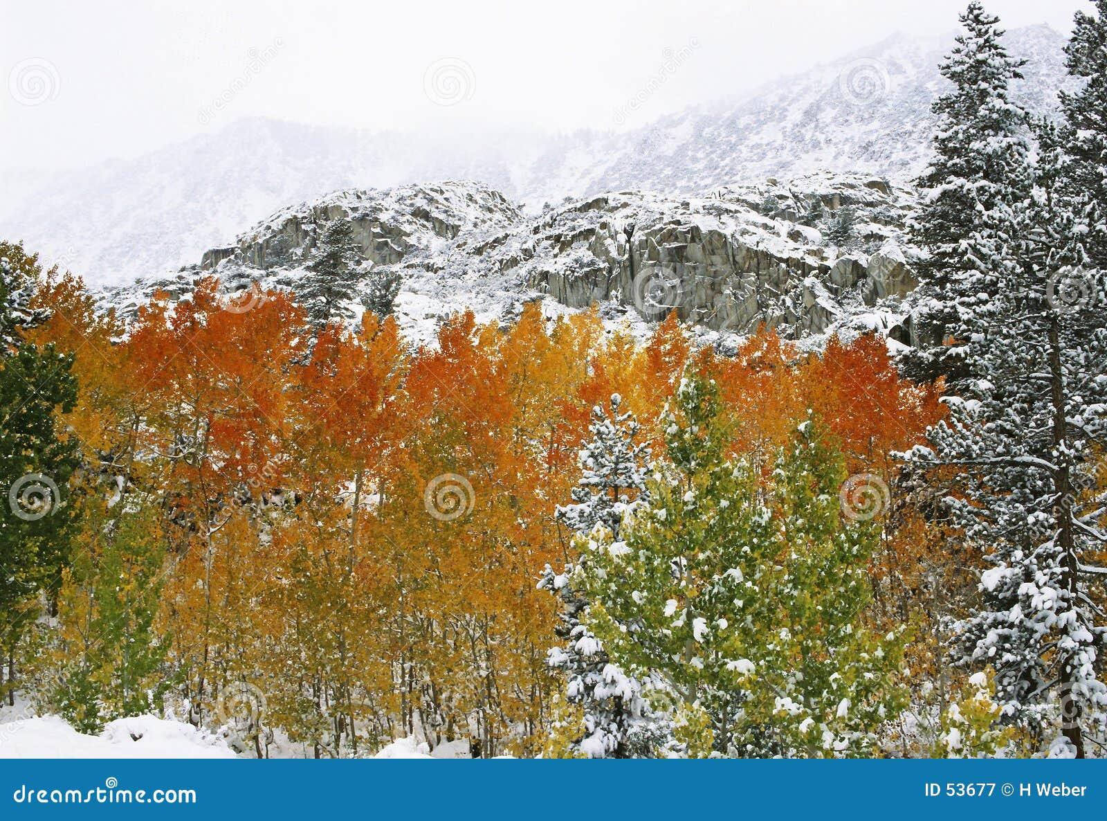 Primera nieve en montañas