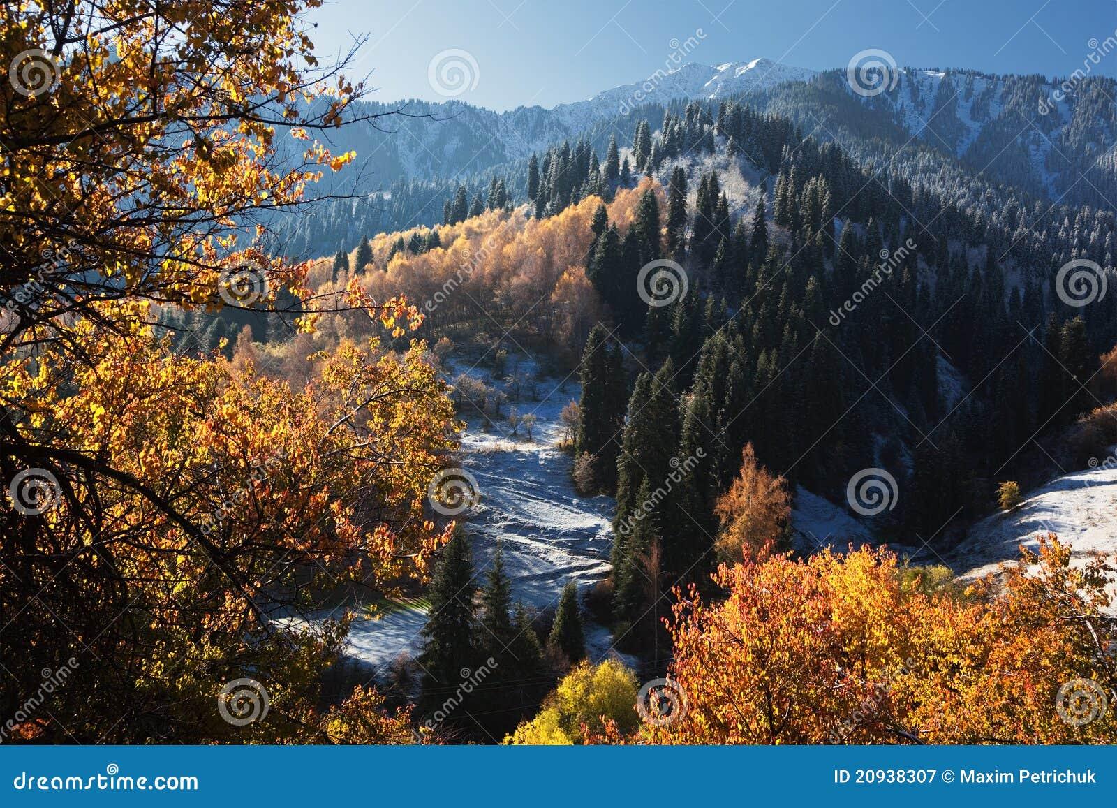 Primera nieve en montañas del otoño