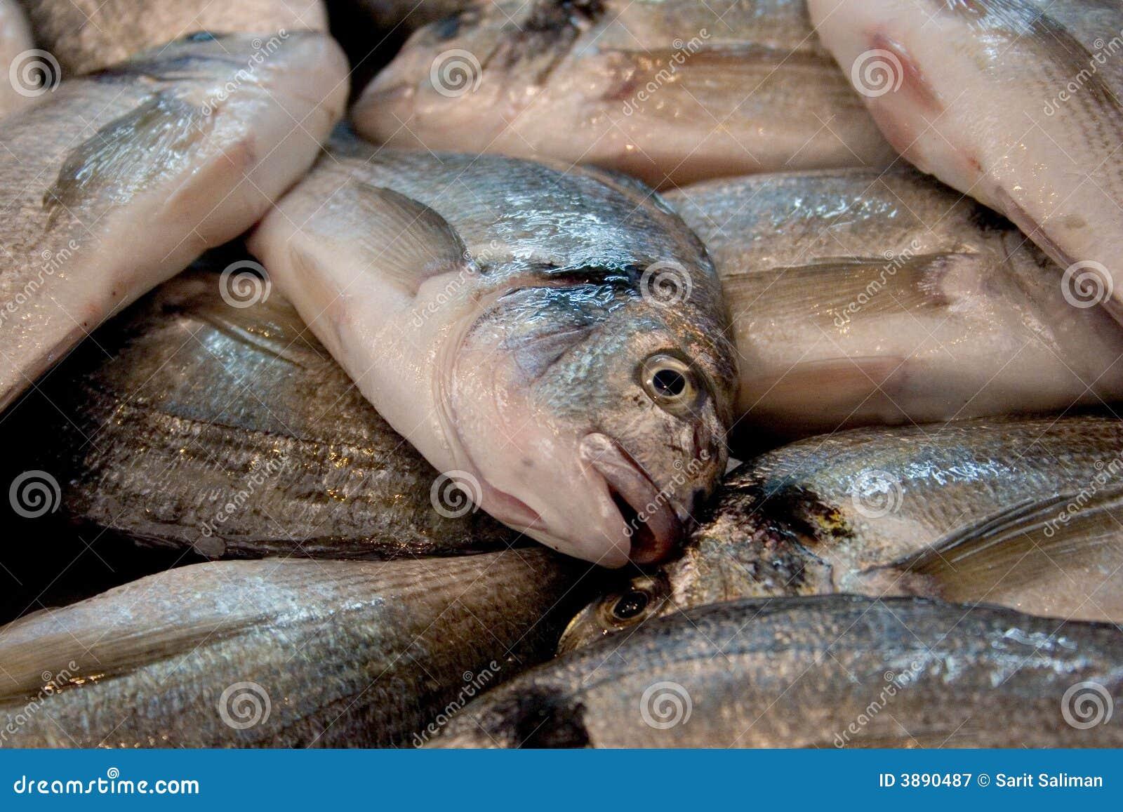 Primo piano dei pesci del mercato