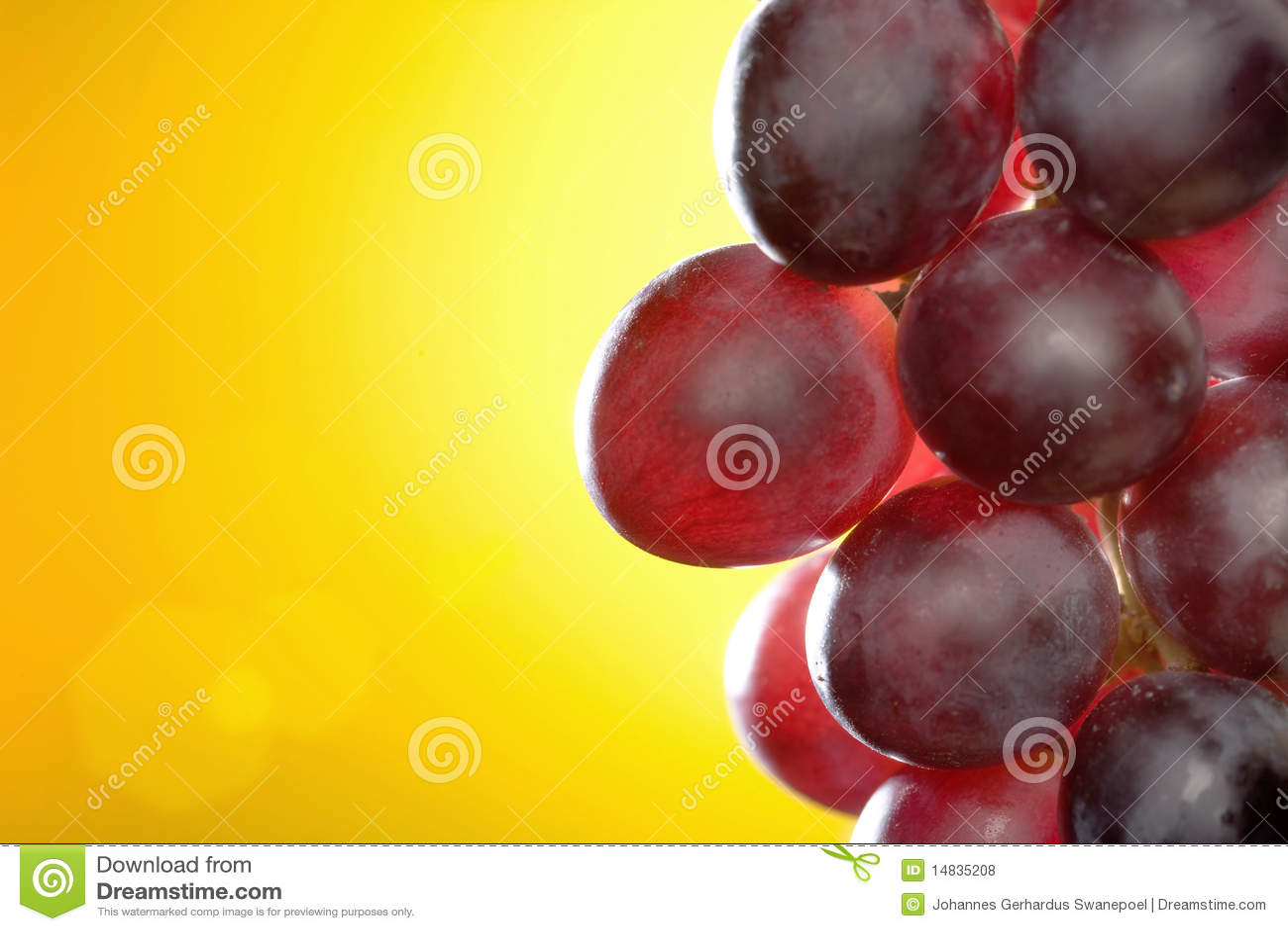 Primo piano dell uva rossa