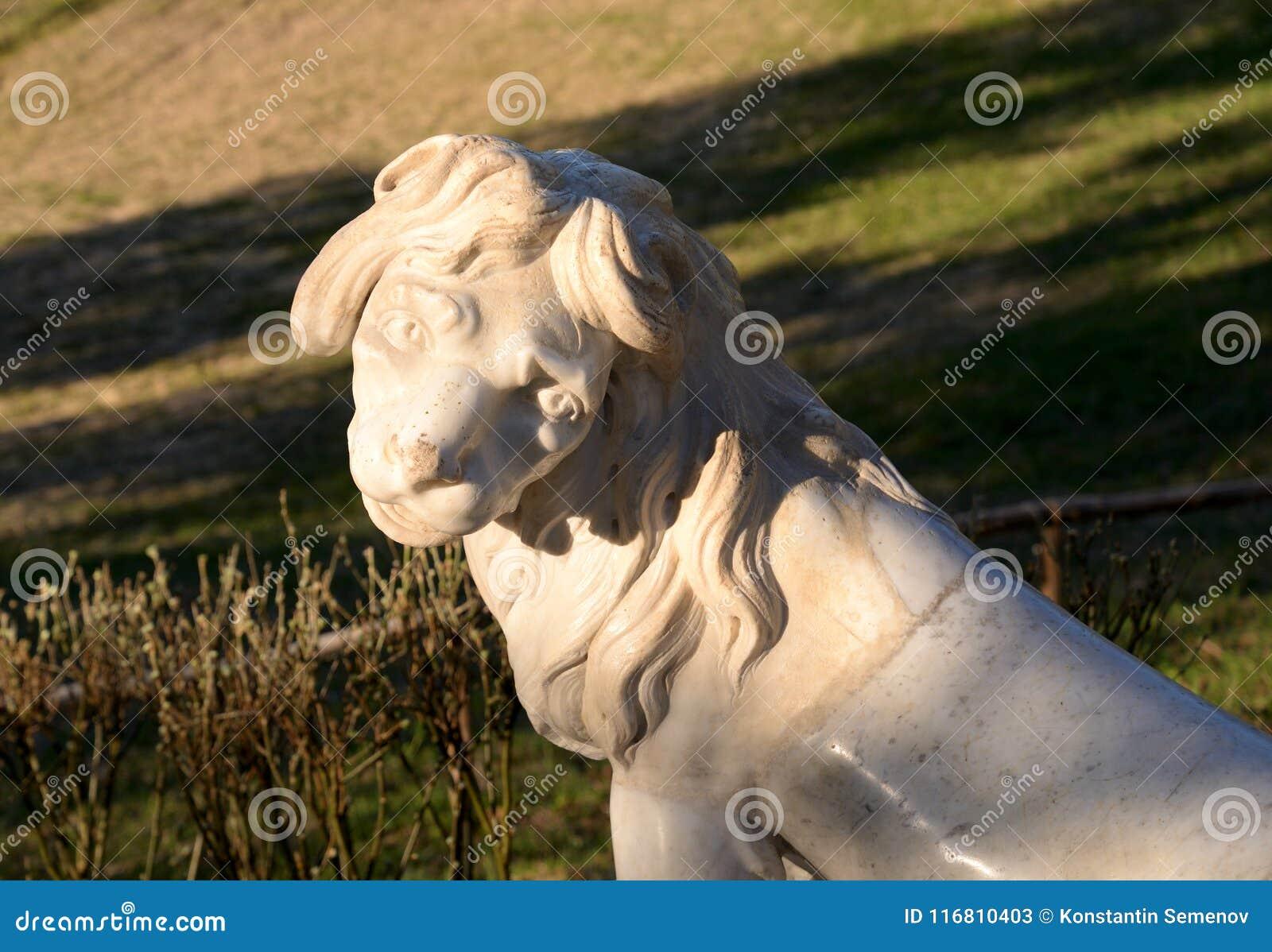Primo piano della statua del leone