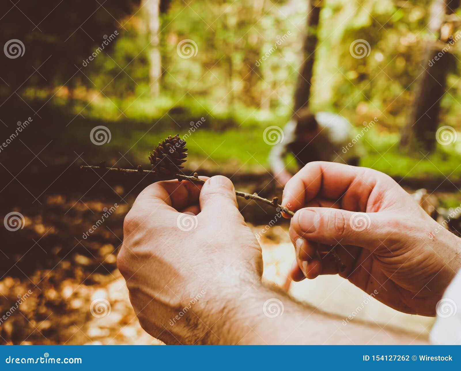 Primo piano di un maschio che tiene un ramo con il pino e un fondo vago