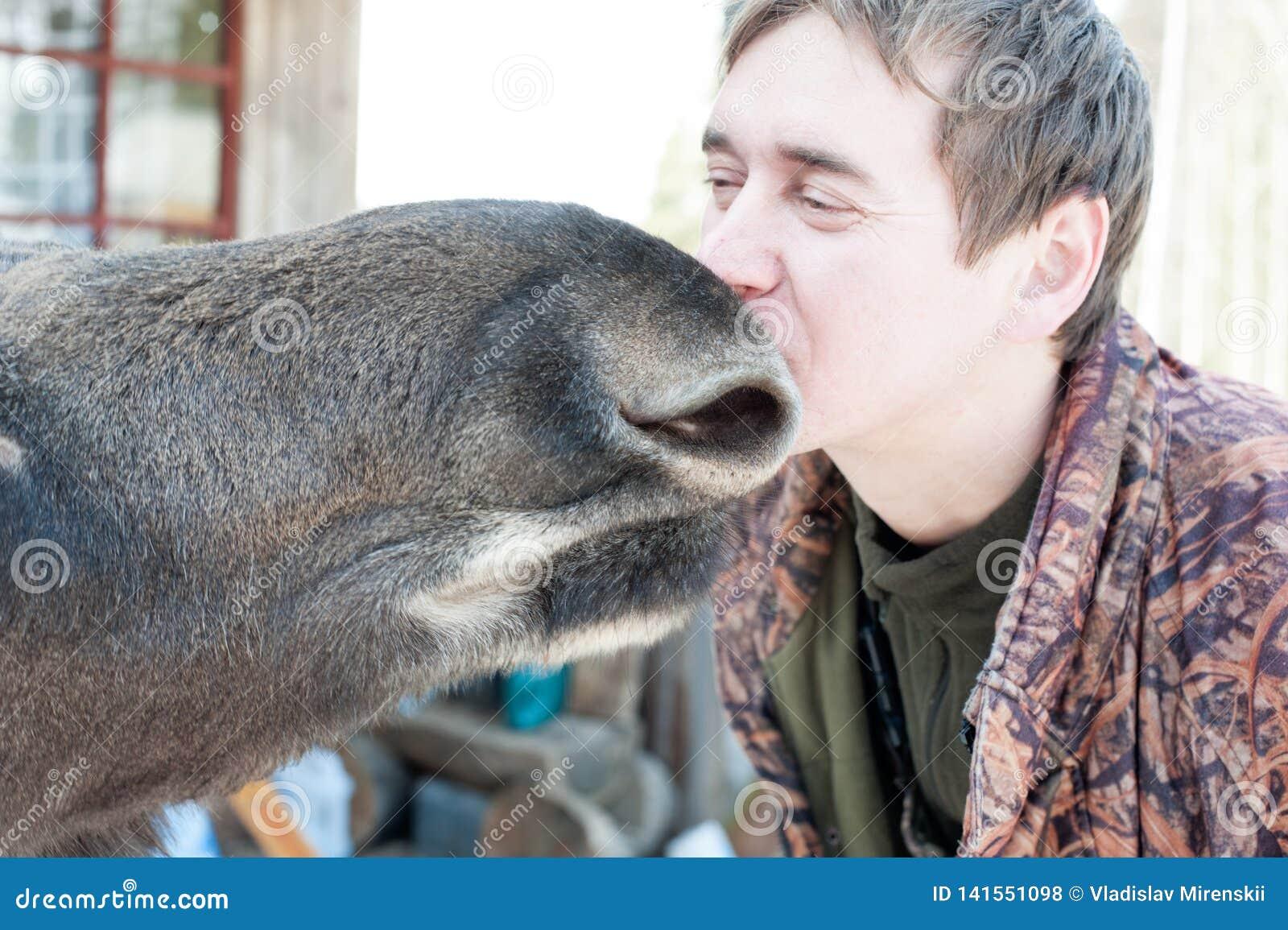 Primo piano di un uomo che bacia un alce