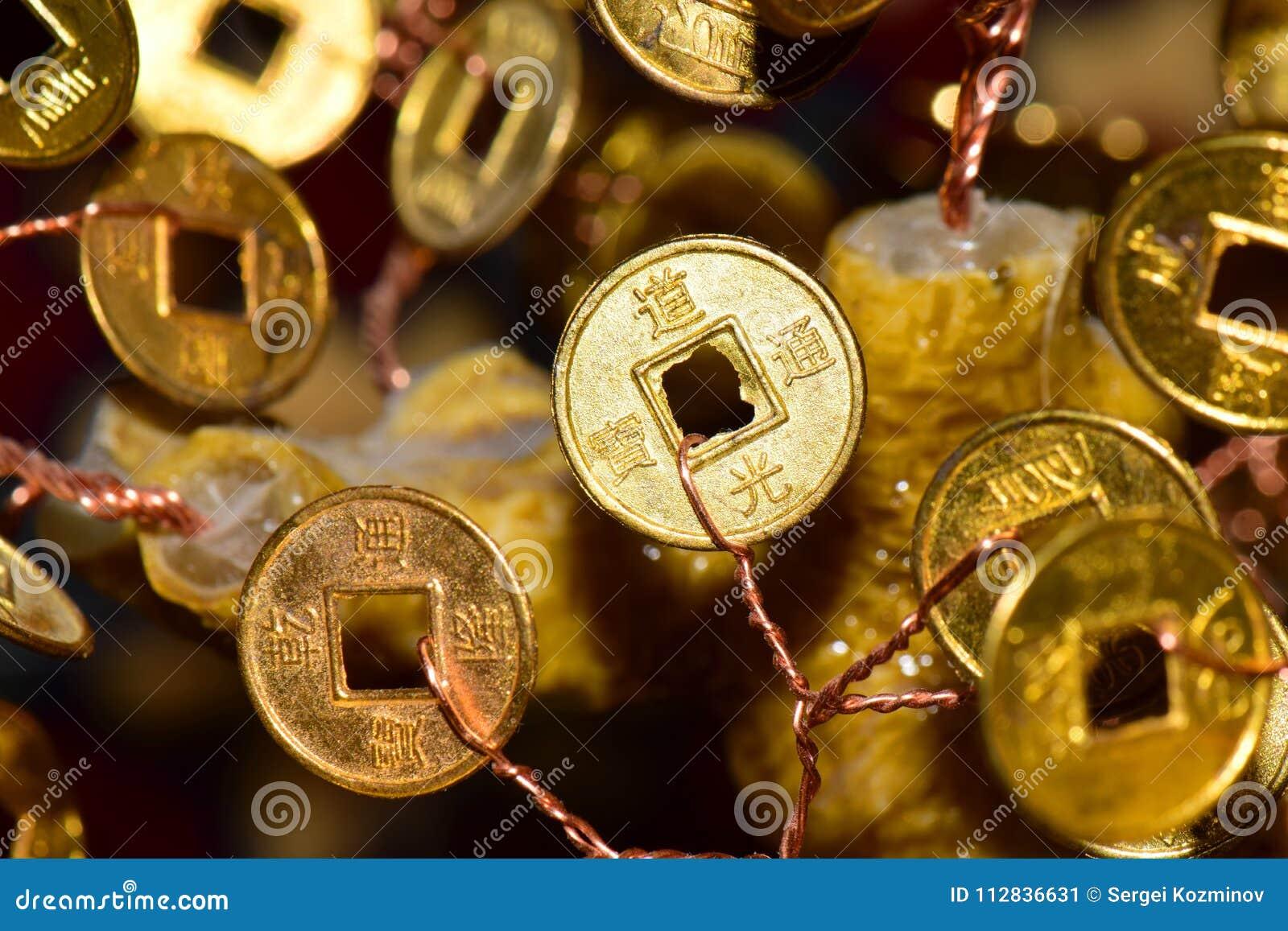 Primo piano di una moneta di oro con i segni su un albero dei soldi