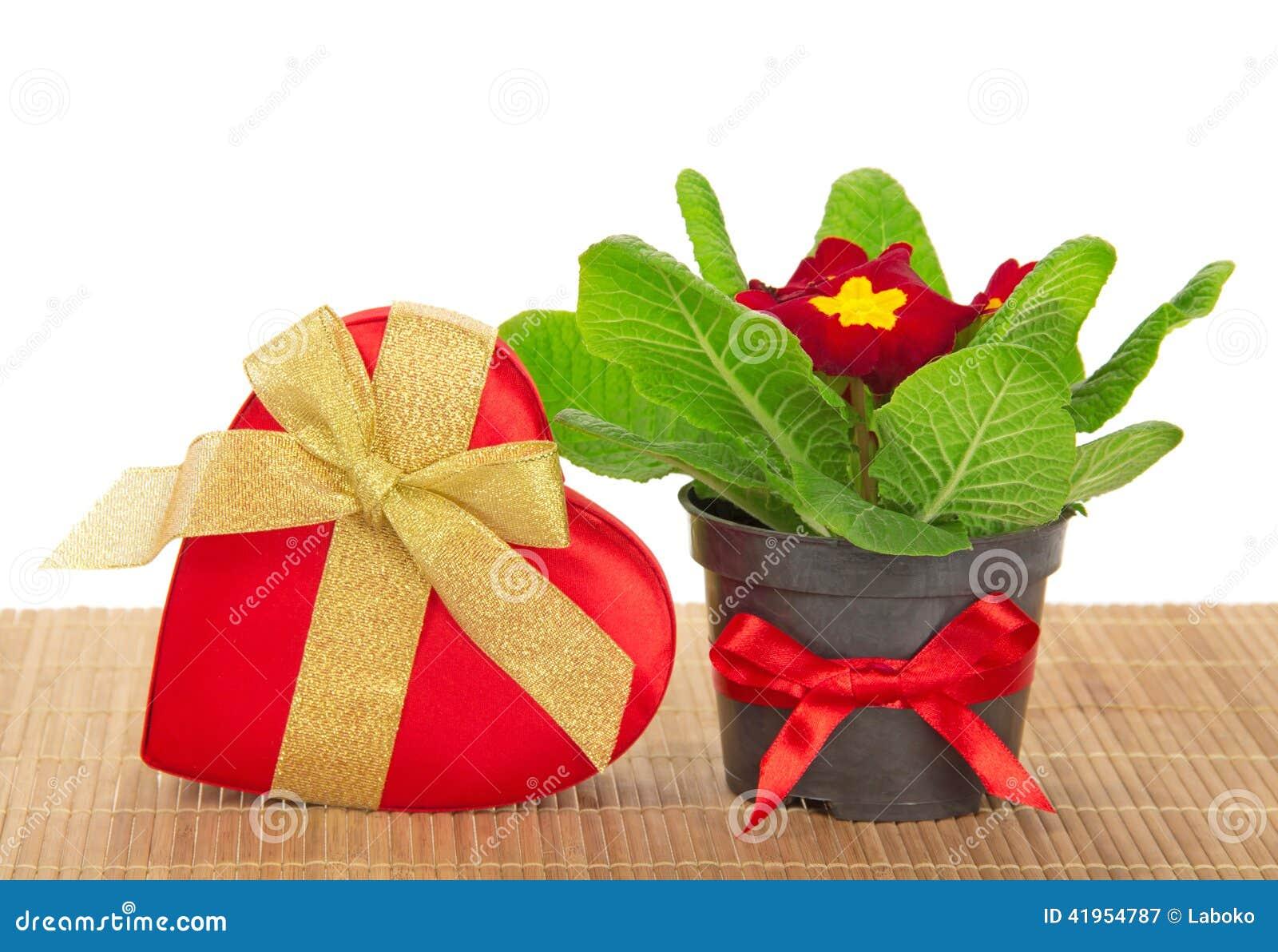 Primula, prezenta serce na bambusowym płótnie pudełko