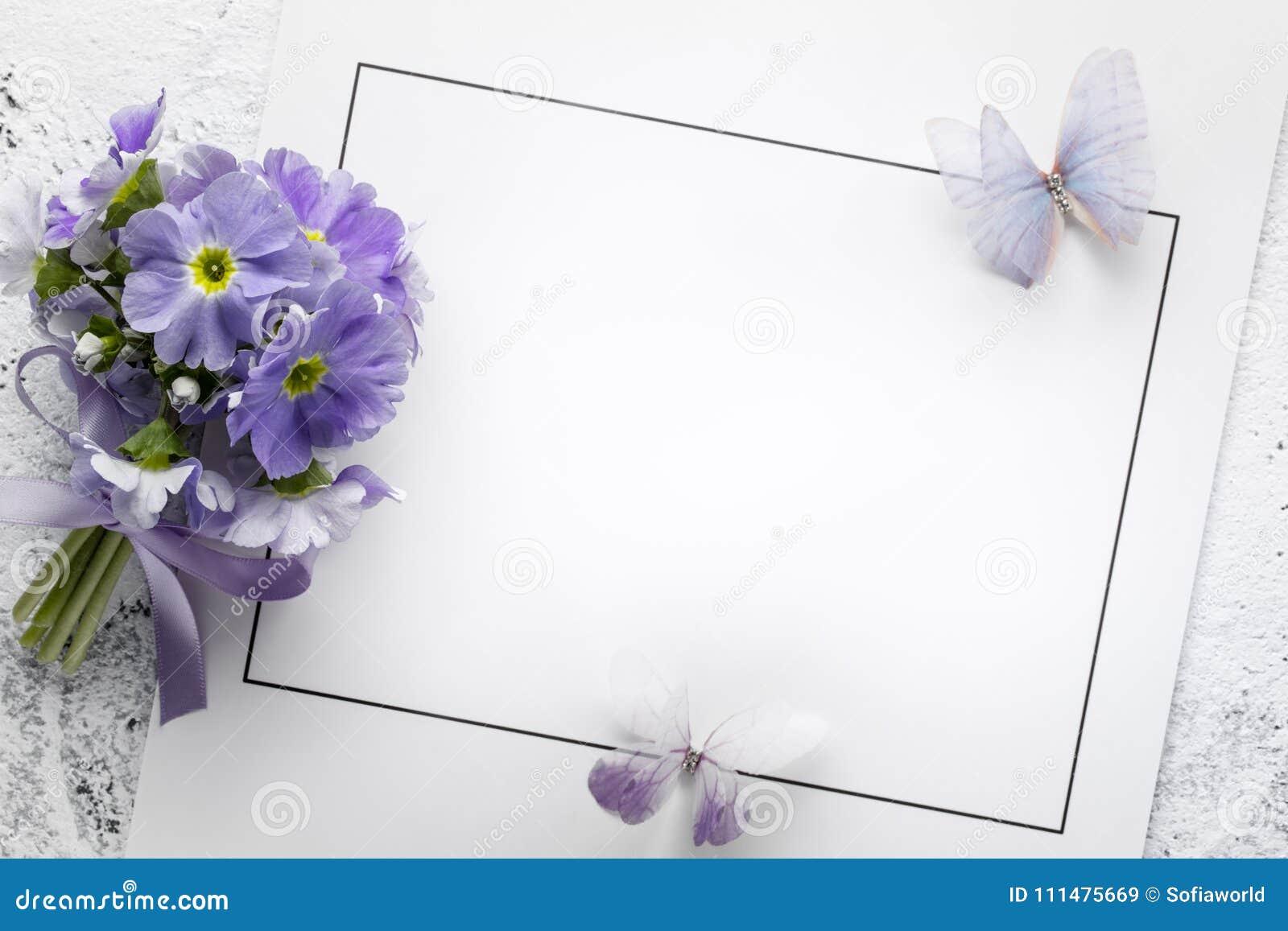 Primulablomma på pappers- kort