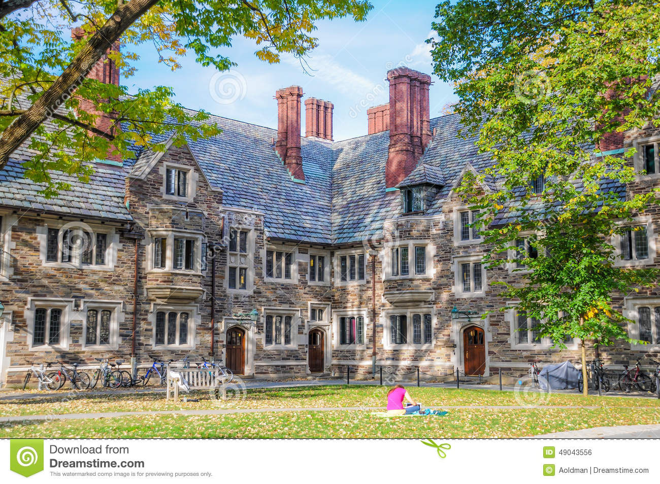 Illustration what is princeton known for