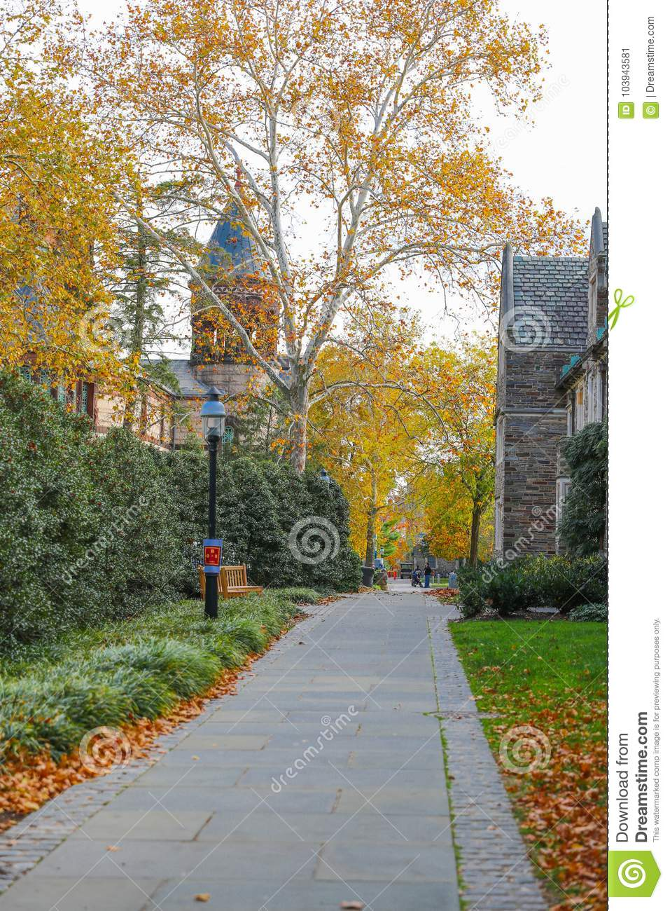 Princeton University is a Private Ivy League University in New Jersey, USA.