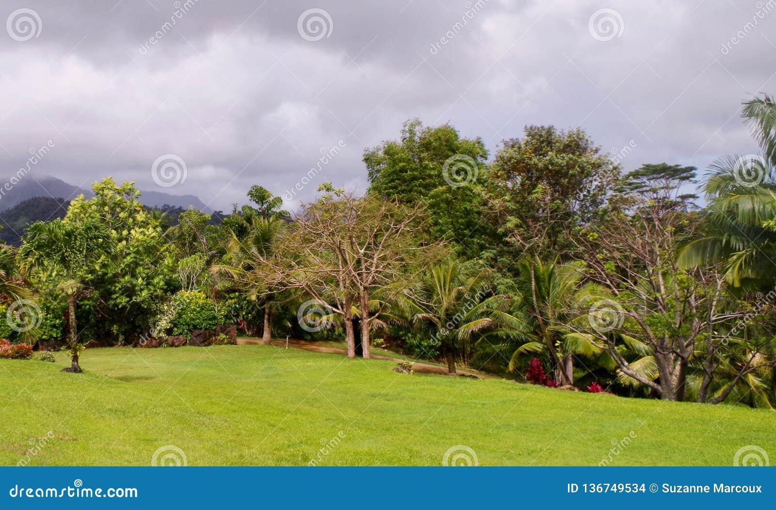 Princeville ogródy botaniczni, Kauai, Hawaje, usa