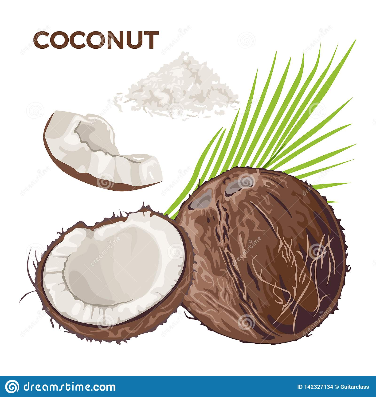 Vector set of whole coconut, half and piece, coconut flakes, palm leaf.