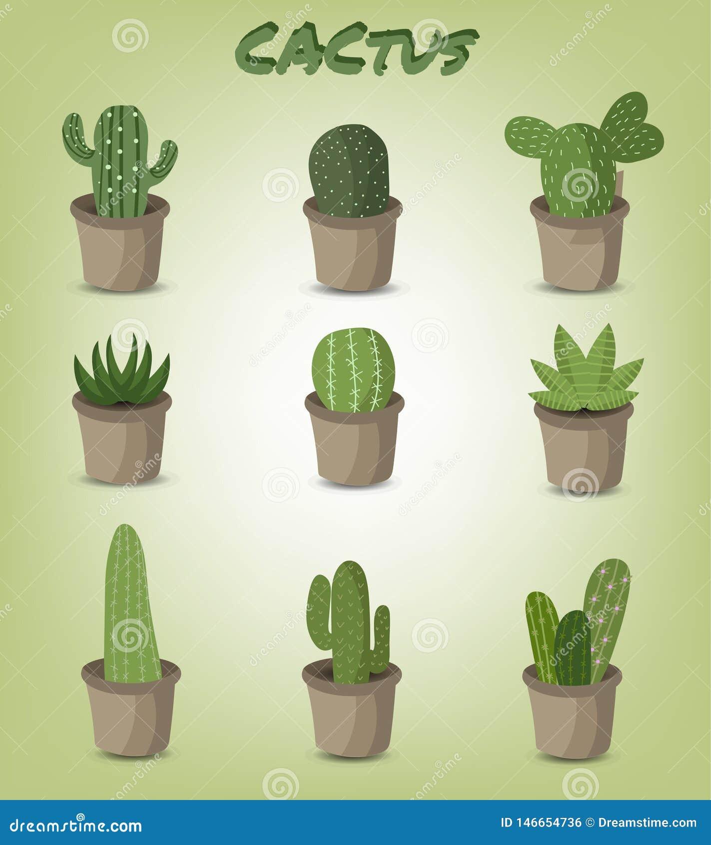 Set of green cactus