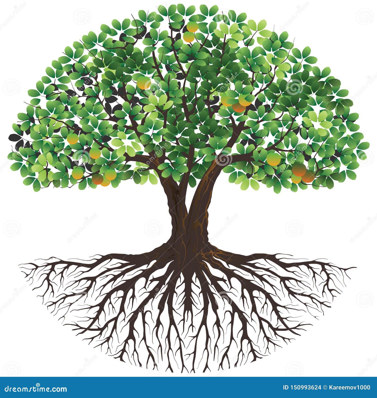 Tree Logo , Nature Yoga, Plant Relax Symbol, Spa Icon