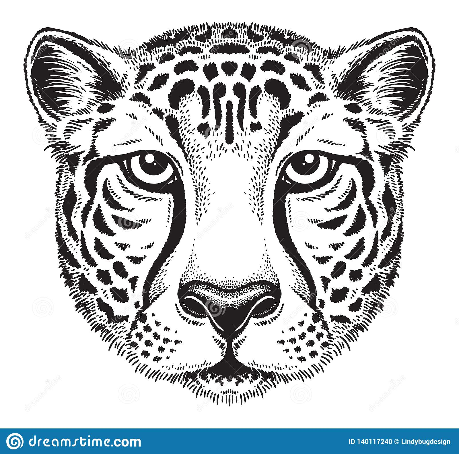 Black and white line drawing of a cheetahs face