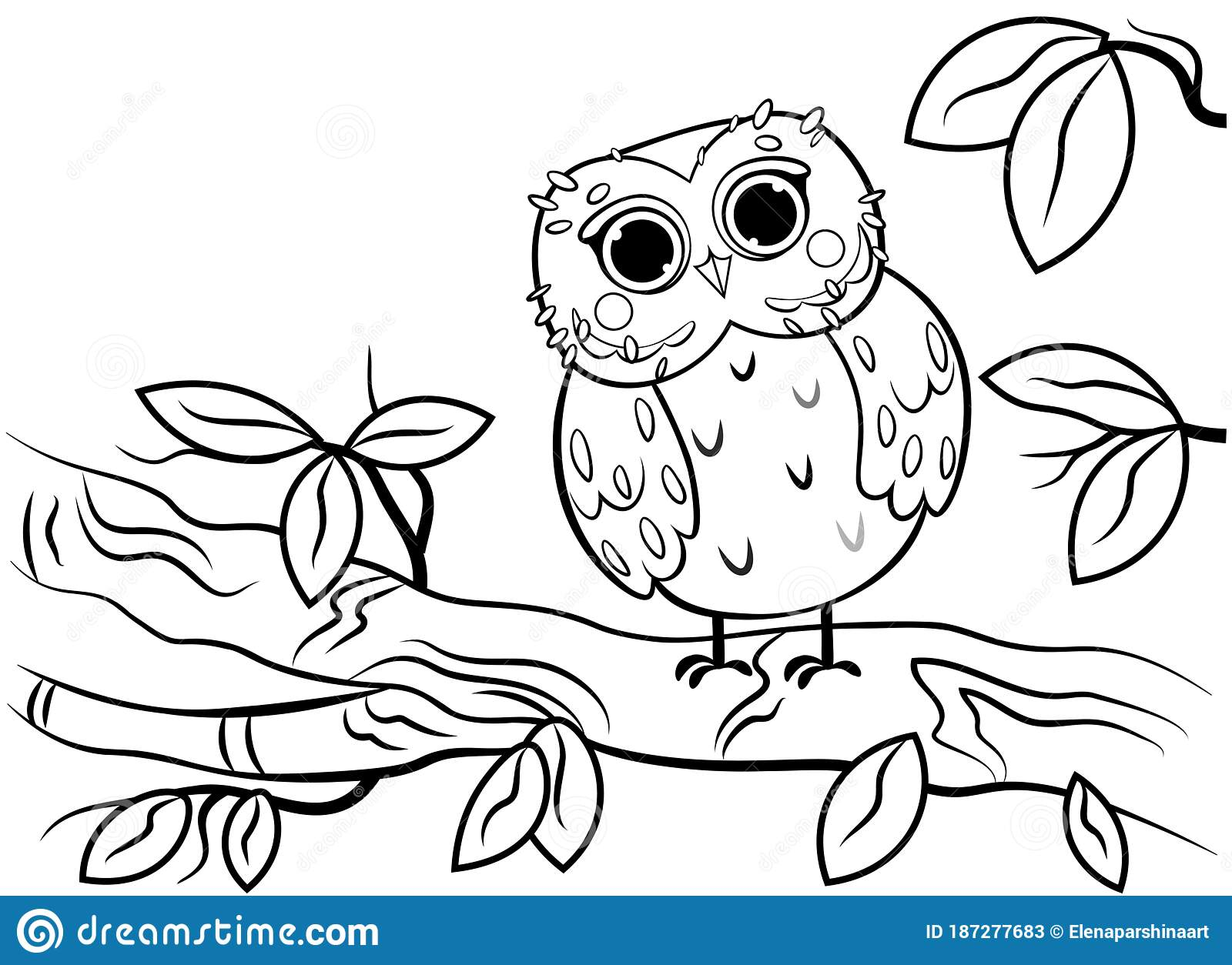 Printable Coloring Page Outline Of Cute Cartoon Owl Sitting On A Tree Branch Vector Image Coloring Book Of Forest Wild Animals Stock Vector Illustration Of Children Contour 187277683