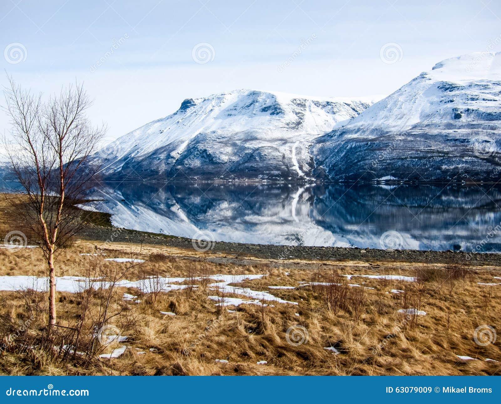 Download Printemps Dans Les Alpes De Lyngen, Norvège Image stock - Image du horizontal, glacier: 63079009