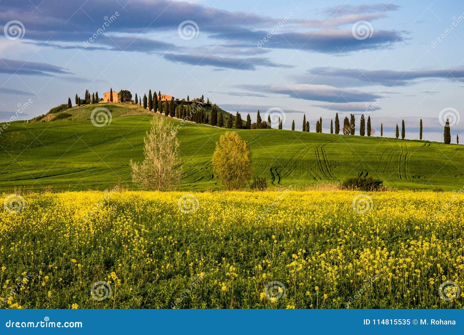 Printemps en Provence de Sienne, Toscane