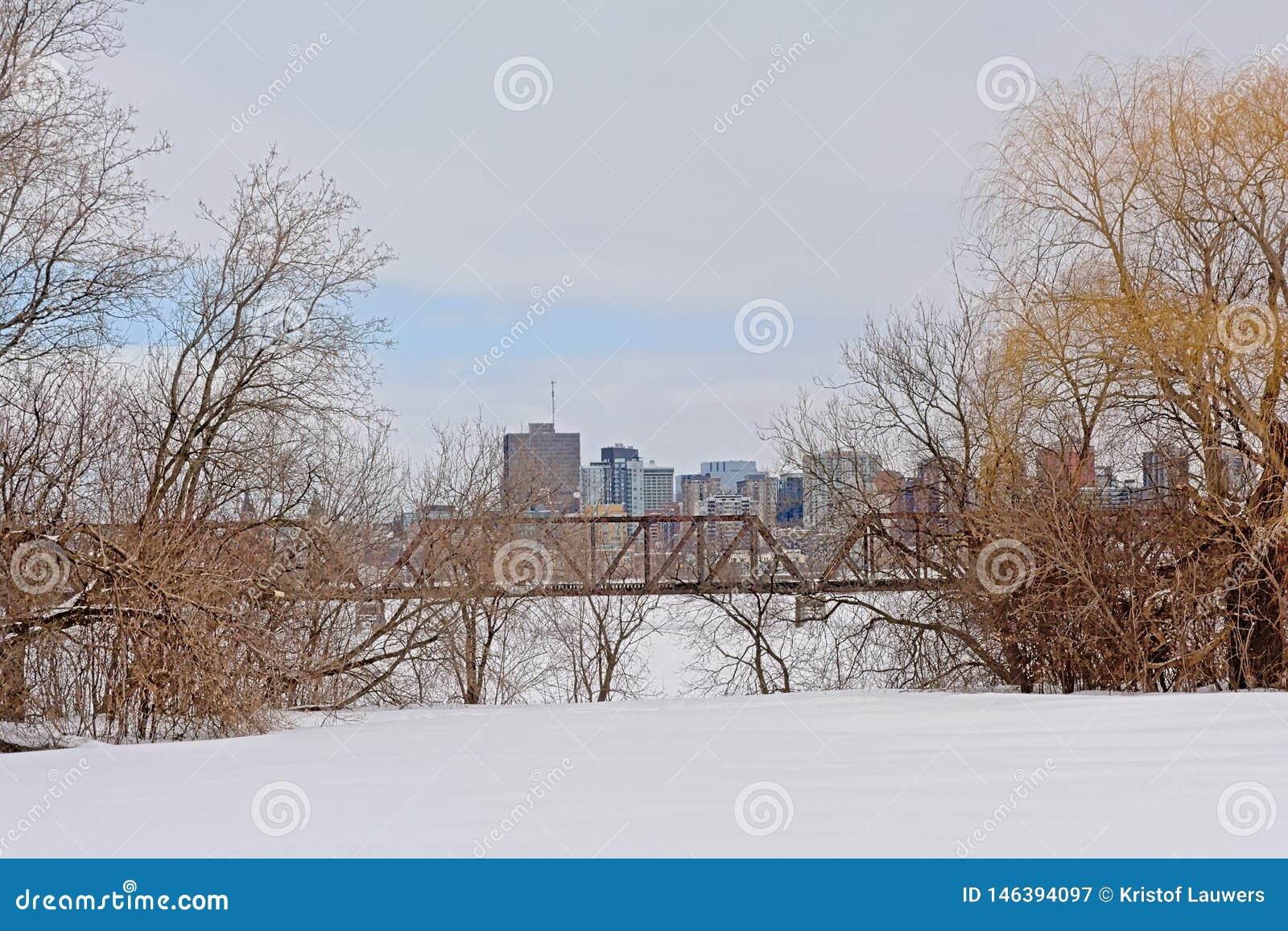 Prinz von Wales-Bahnbrücke über gefrorenem Ottawa-Fluss mit den Bürotürmen des Rumpfs hinten, gestaltet durch bloße Bäume
