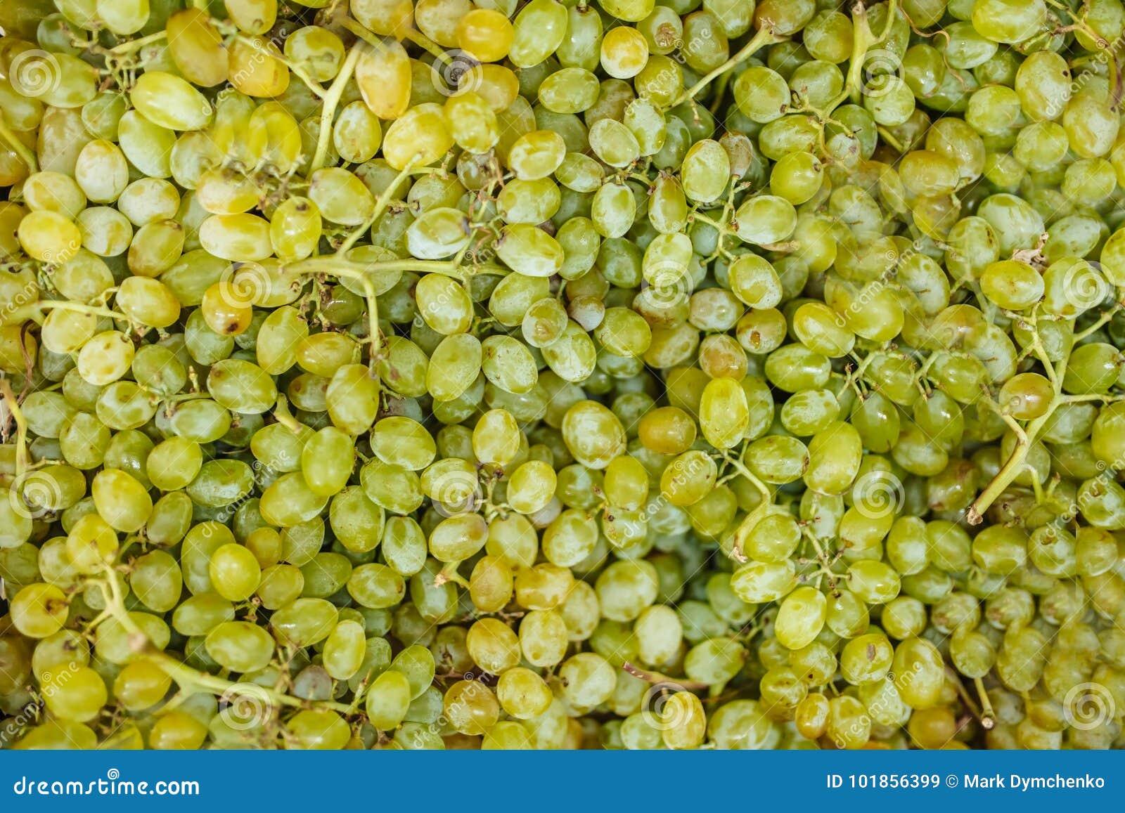 Priorità bassa dell uva