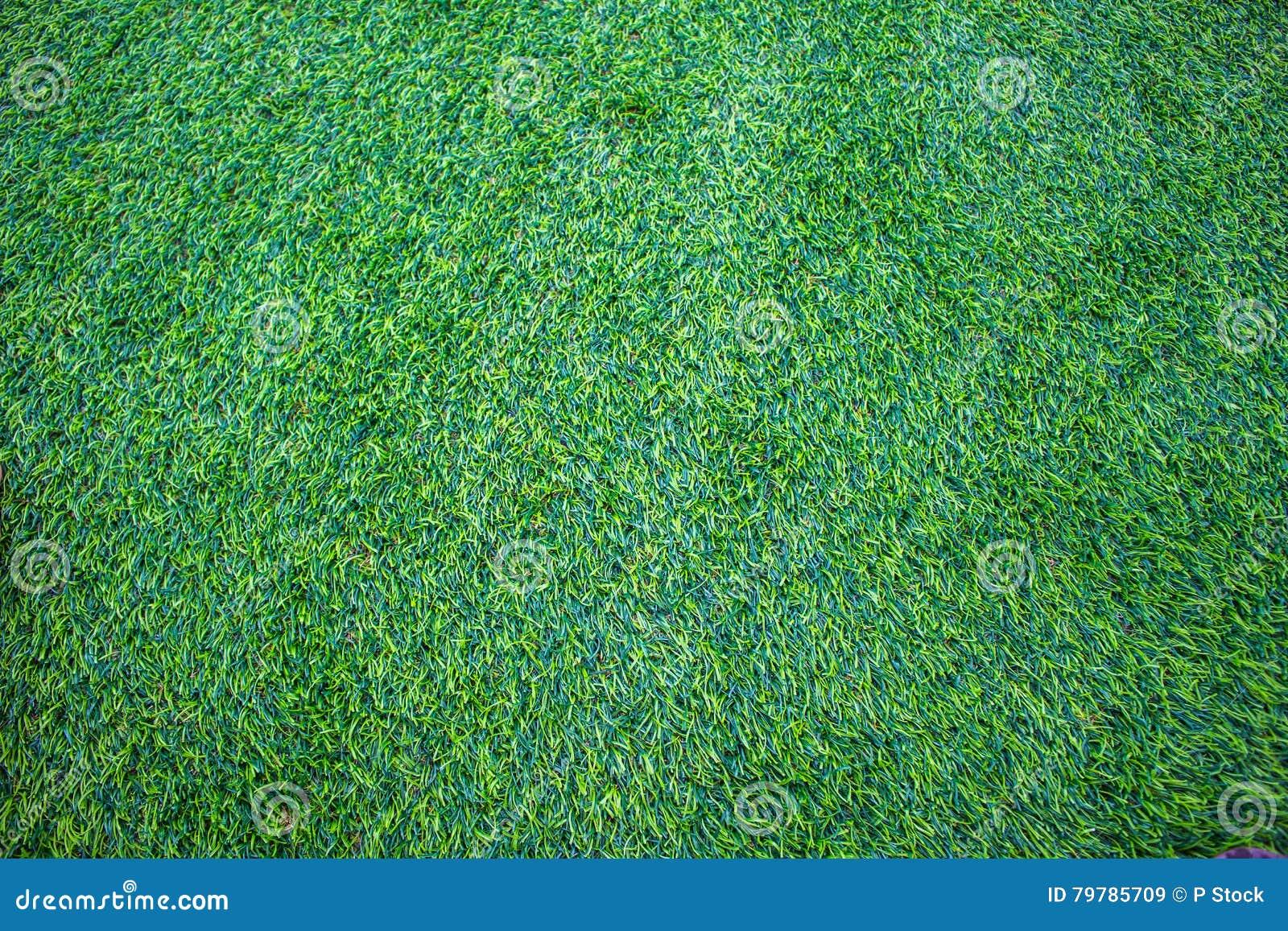 Priorità bassa di erba verde