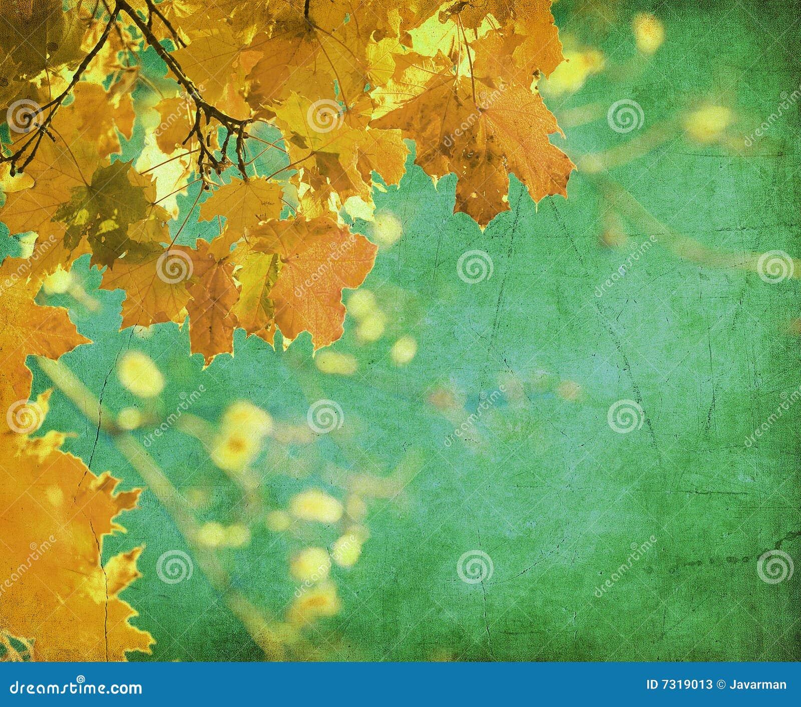 Priorità bassa di Grunge con i fogli di autunno
