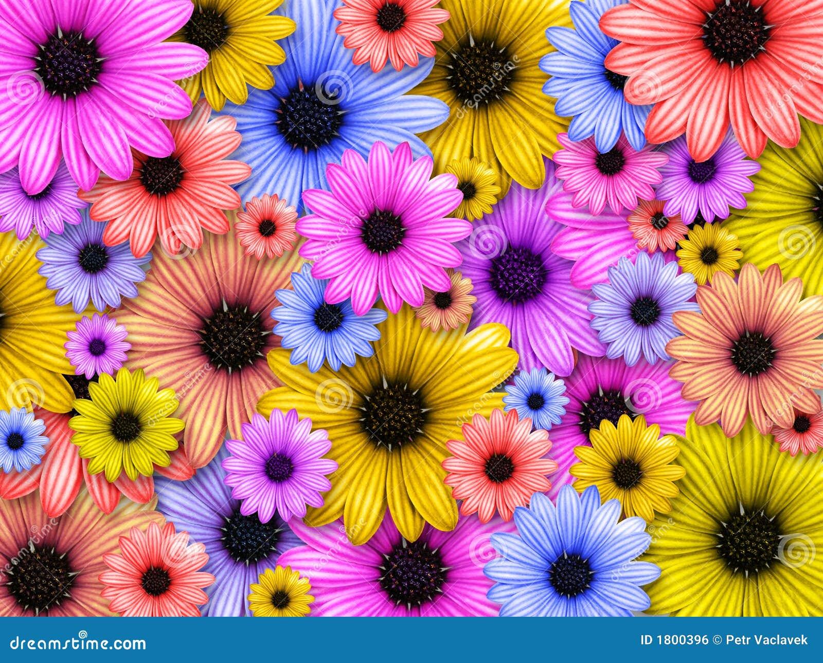 Priorit bassa fatta dai fiori colorati illustrazione di for Fiori stilizzati colorati