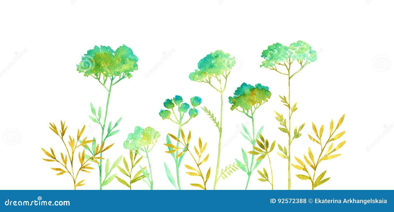 Priorità bassa floreale di colore disegnato a mano