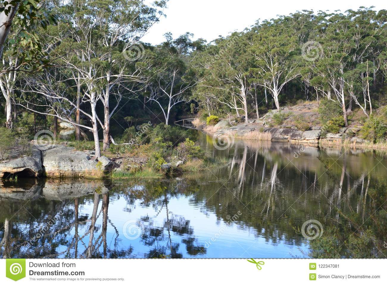 Pristine outdoor landscape in the Australian bush