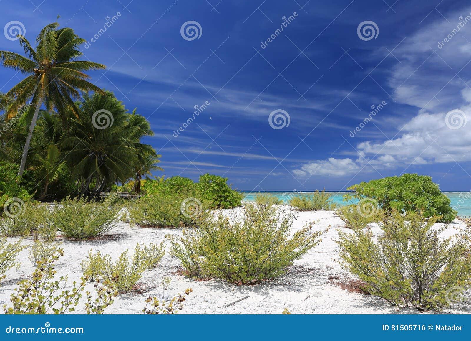 Pristine Tropical Beach On Christmas Island, Kiribati Stock Photo ...
