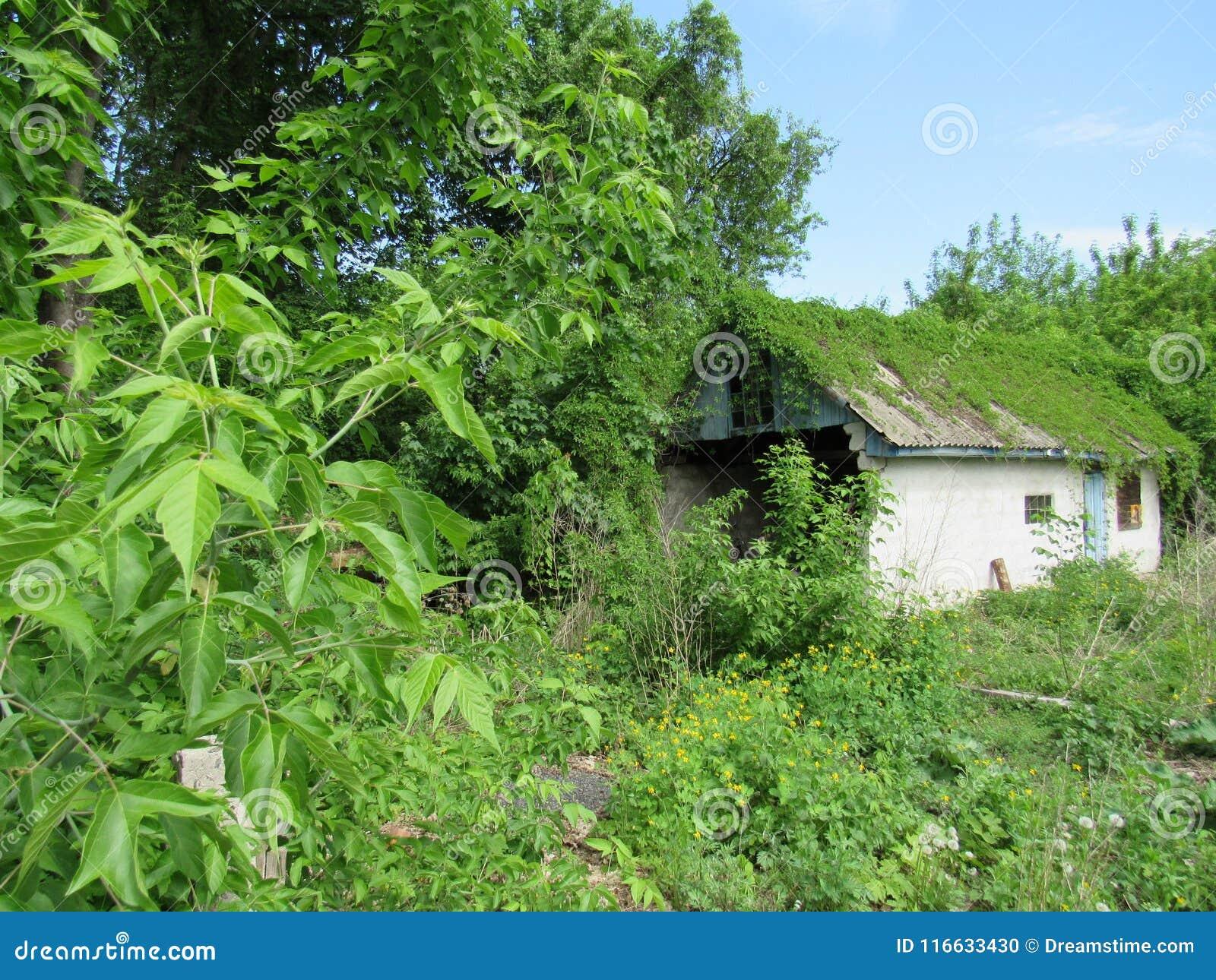 Privé huis in Tchernobyl