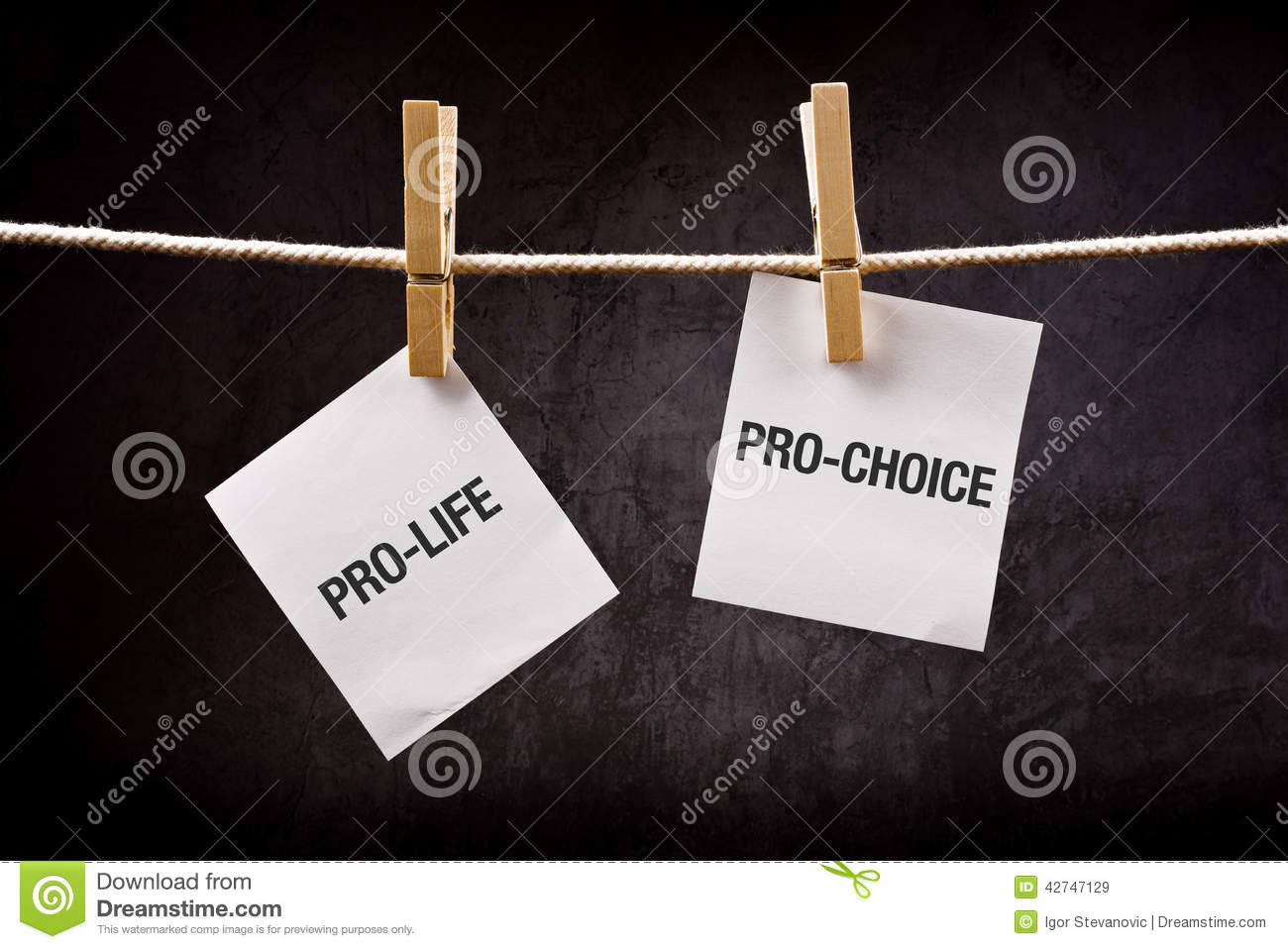 essays on pro-life vs pro-choice