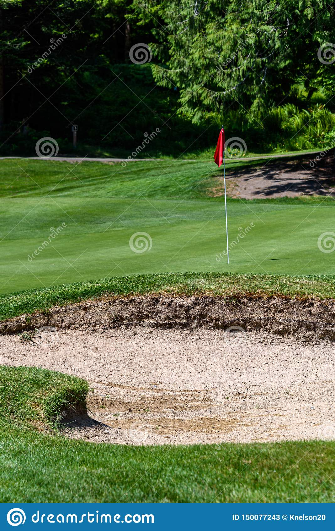 Problem på golfbanan, sandfälla som skyddar en golfgräsplan med träd i bakgrunden, inkluderar stiftet med den röda flaggan och go