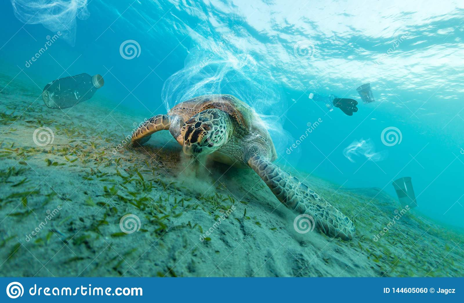 Problema global subaquático com desperdícios plásticos