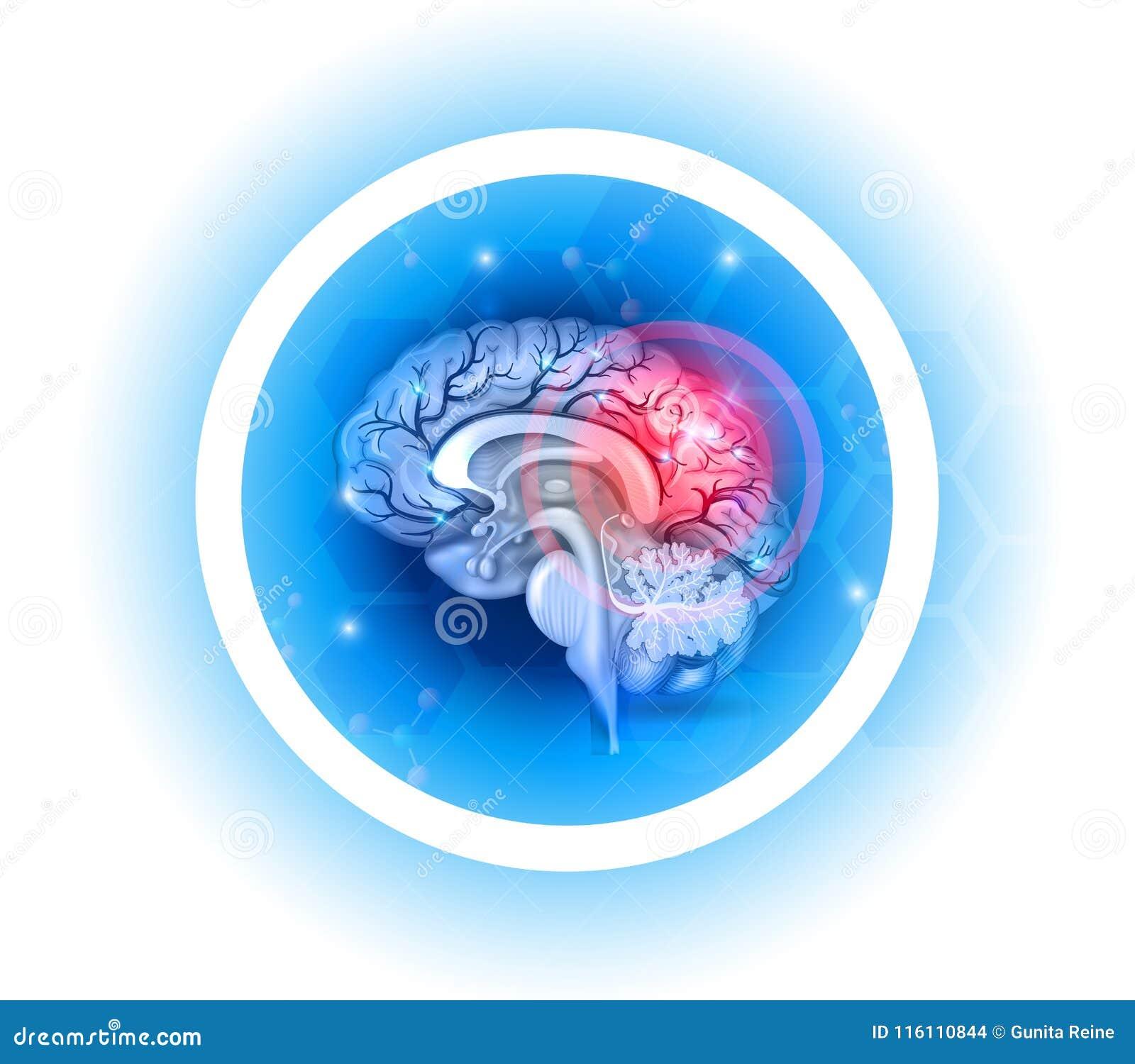 Problemsymbol för mänsklig hjärna