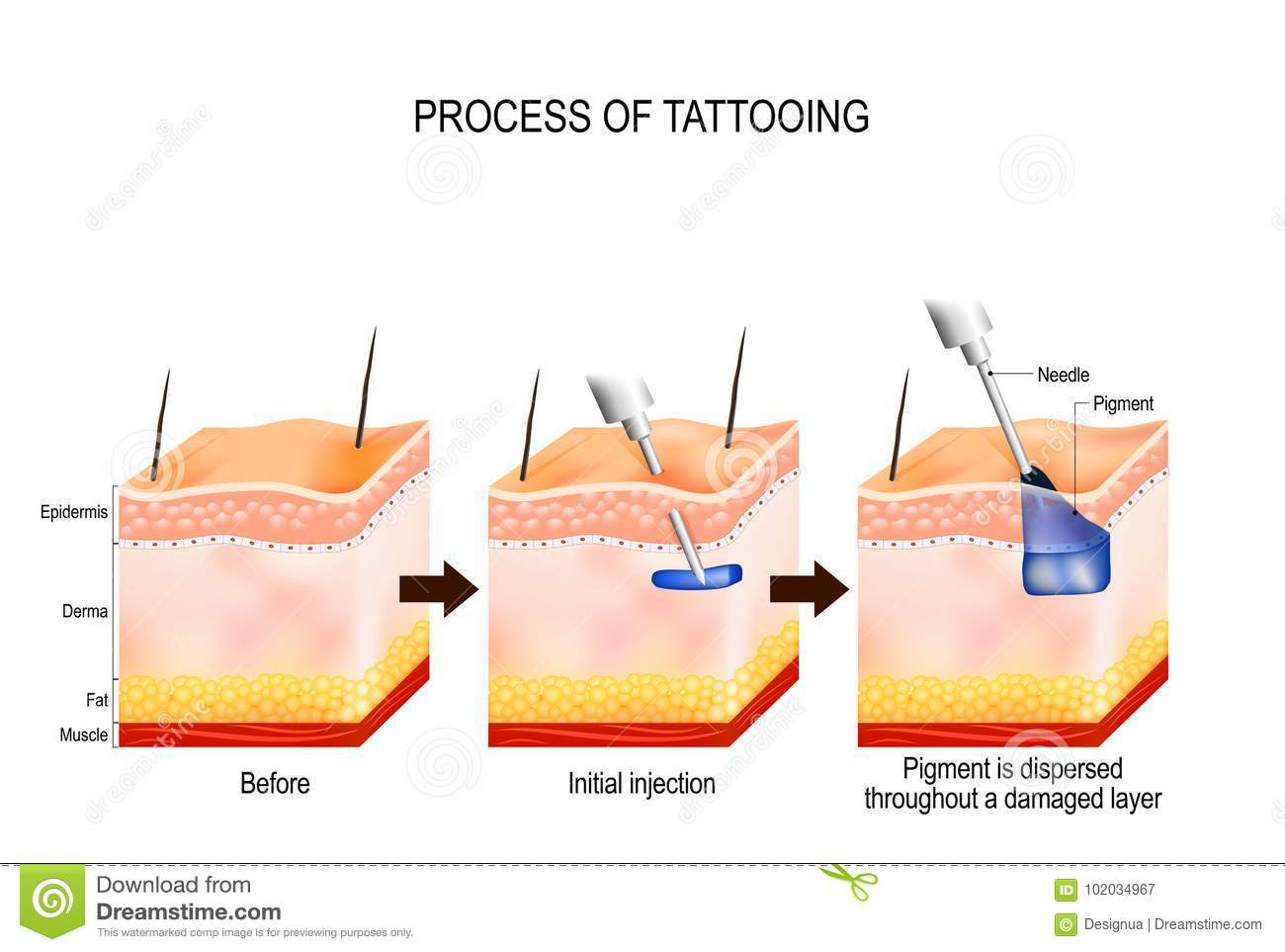 Process of tattooing stock vector illustration of for Process of tattooing
