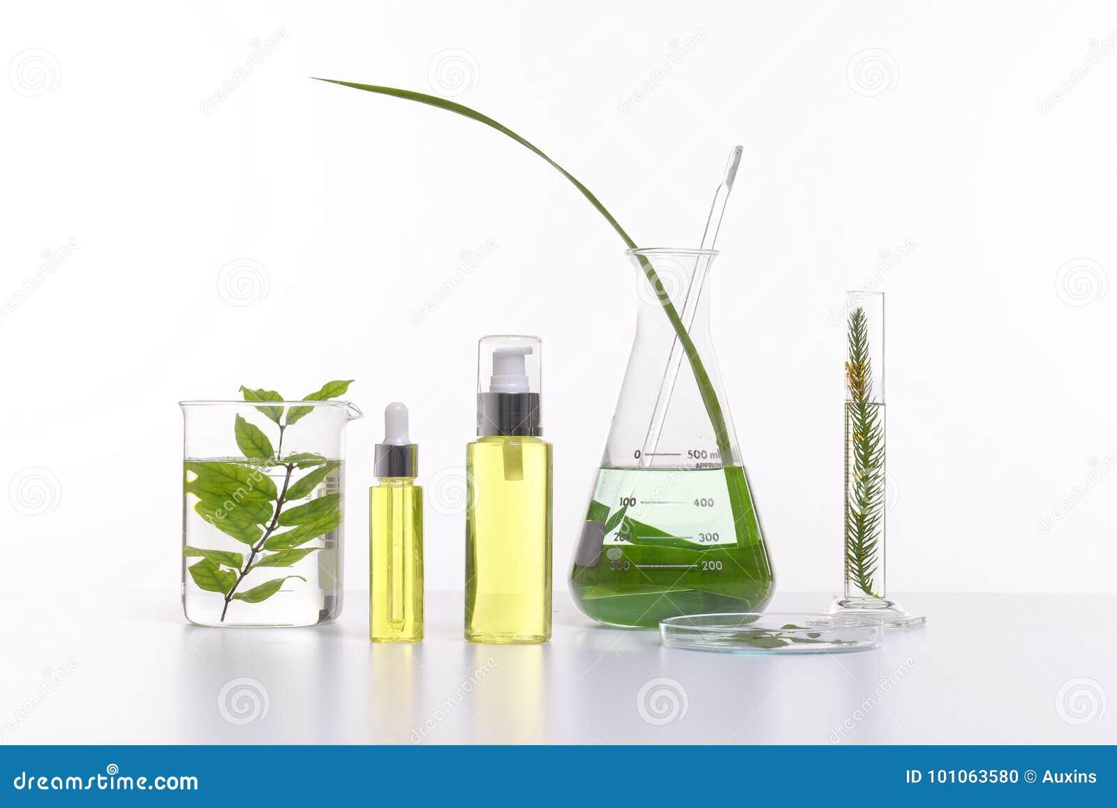 Prodotto naturale con gli ingredienti di erbe, primo piano dei cosmetici di bellezza