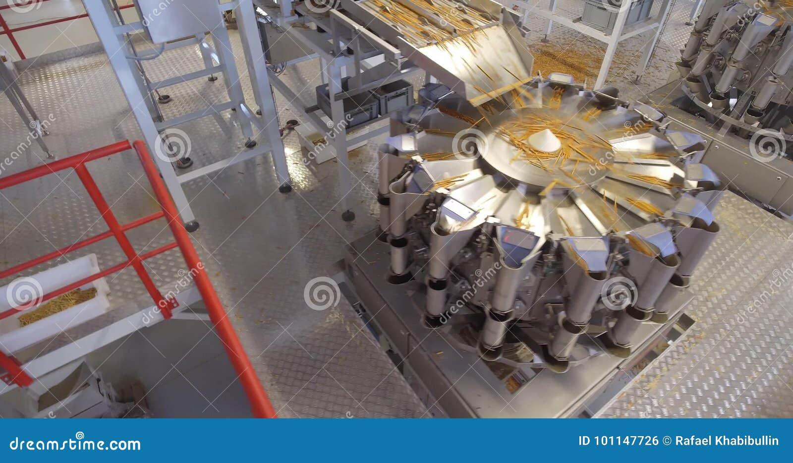 Production line at food processing plant  Merchandise, enterprise
