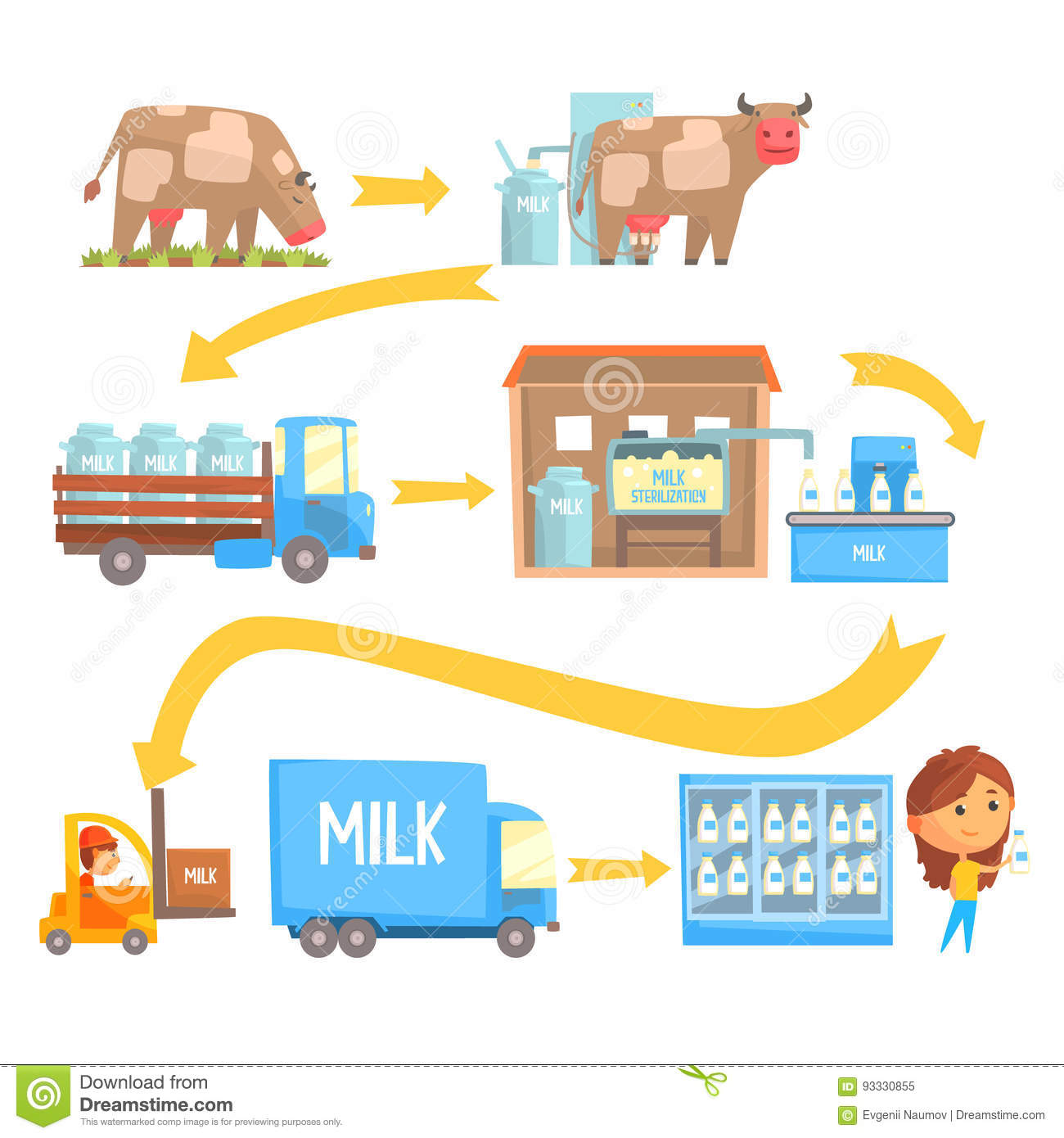 Production And Processing Milk Stages Set Of Vector