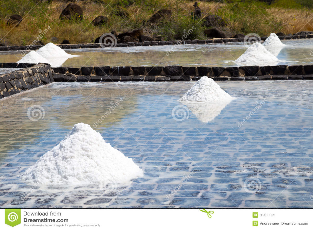 Production of sea salt from the waters of the indian ocean for Local landscapers