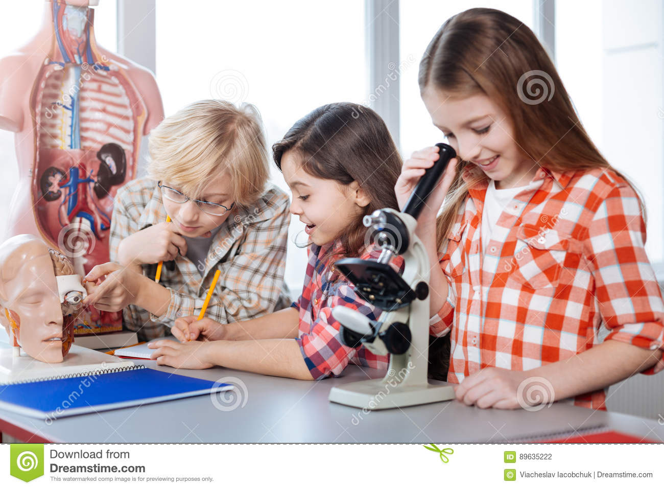 productive classmates working on biology assignment stock photo productive classmates working on biology assignment