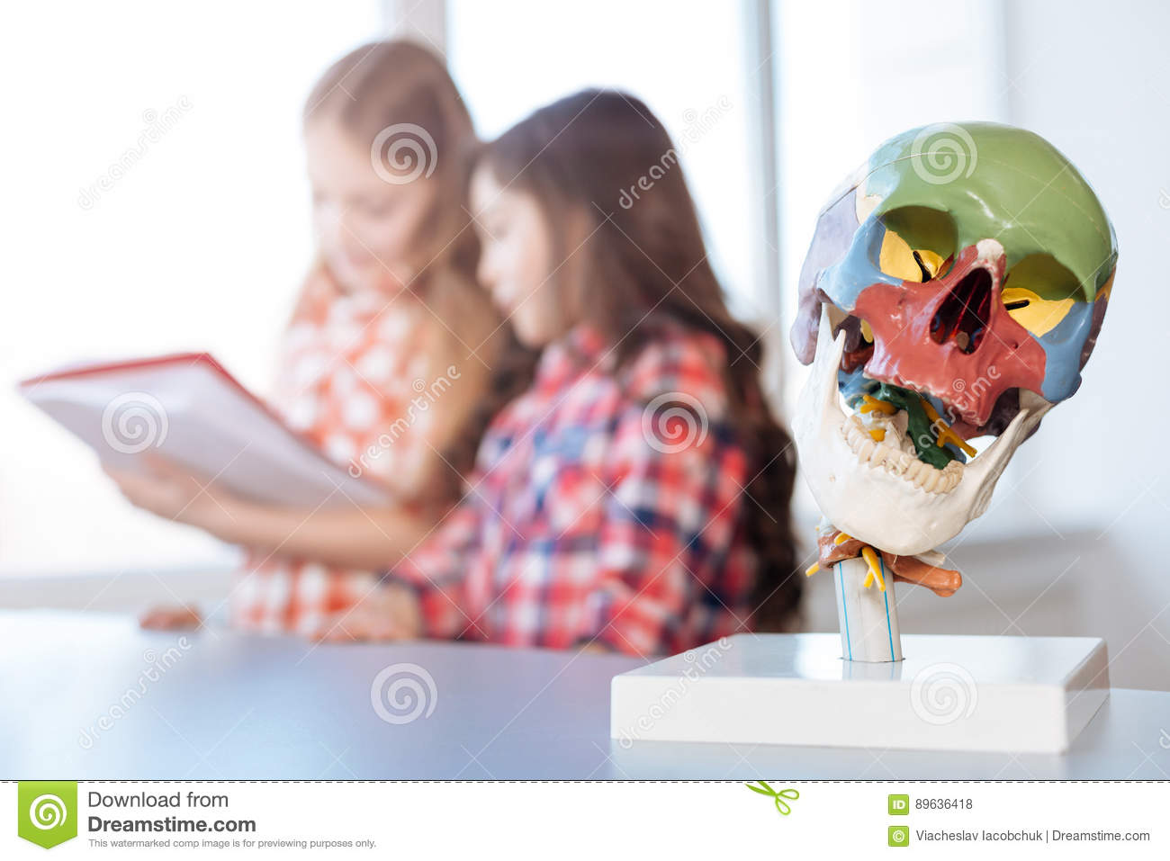 productive inspiring students reading a book on anatomy stock photo