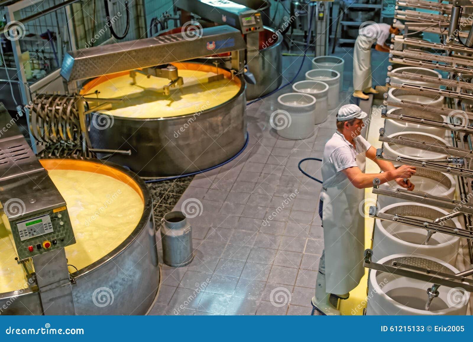 Produktion av Gruyereost på ostfabriken i ett historiskt