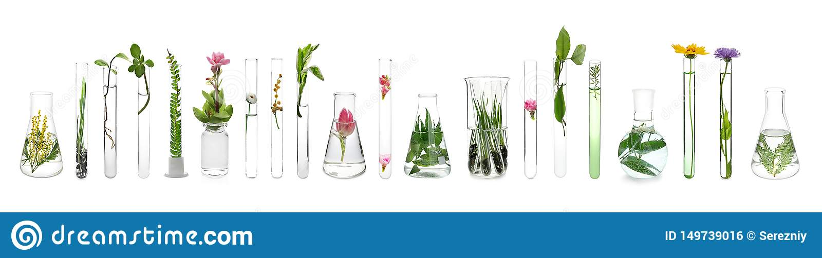Produtos vidreiros de laborat?rio com as plantas no fundo branco