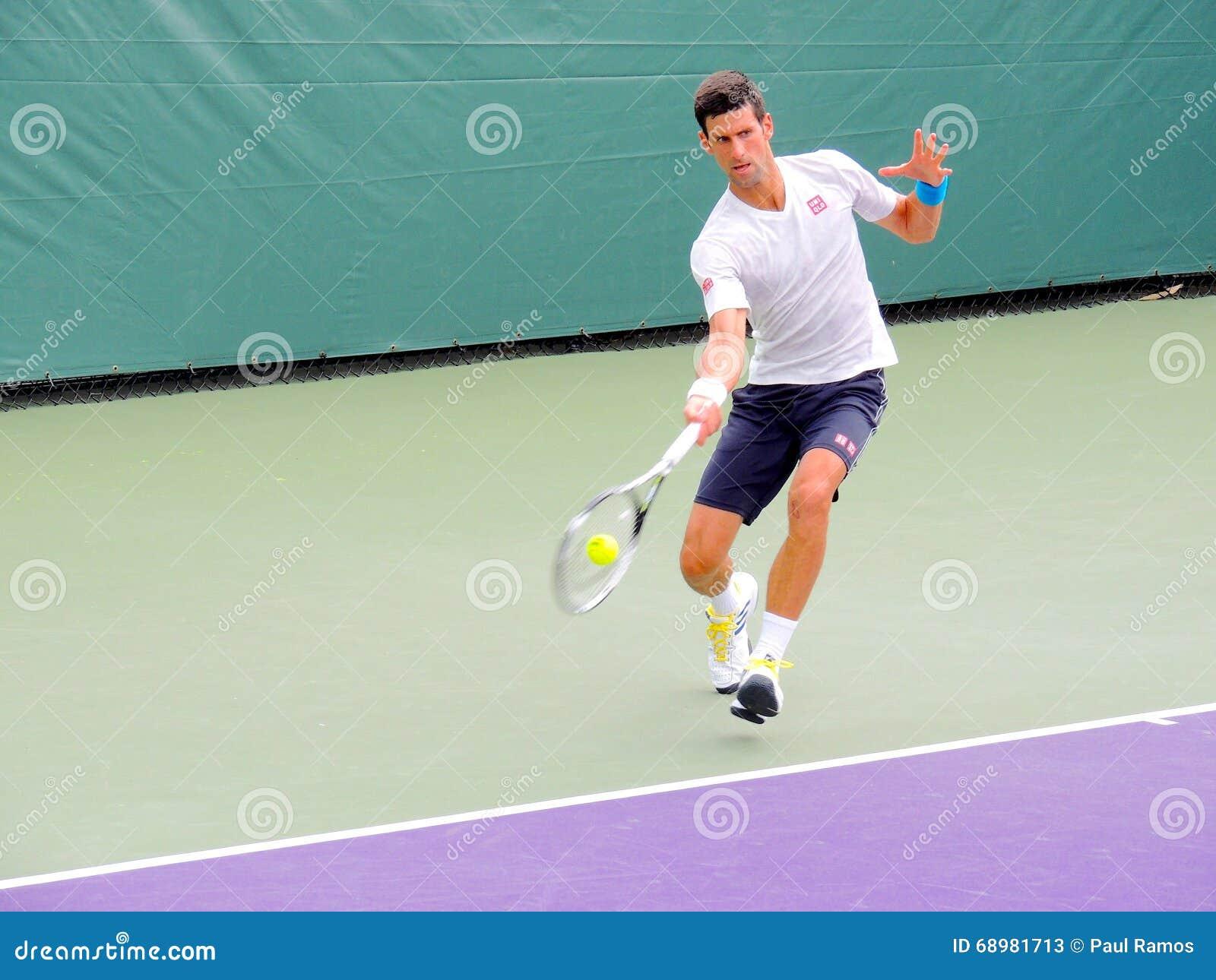 Profesional del tenis del ATP de Novak Djokovic de Serbia