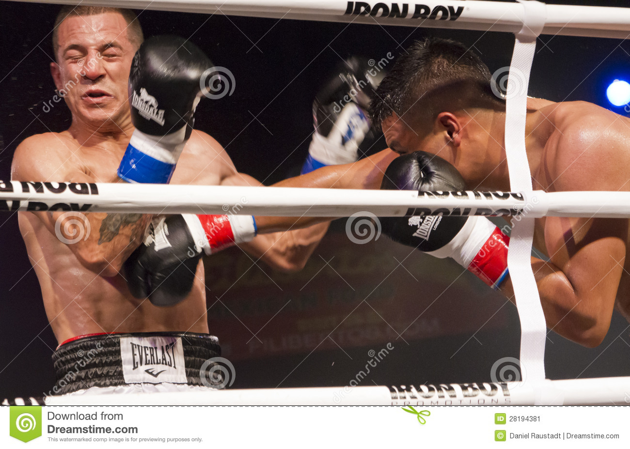 Professional and Amateur Boxing