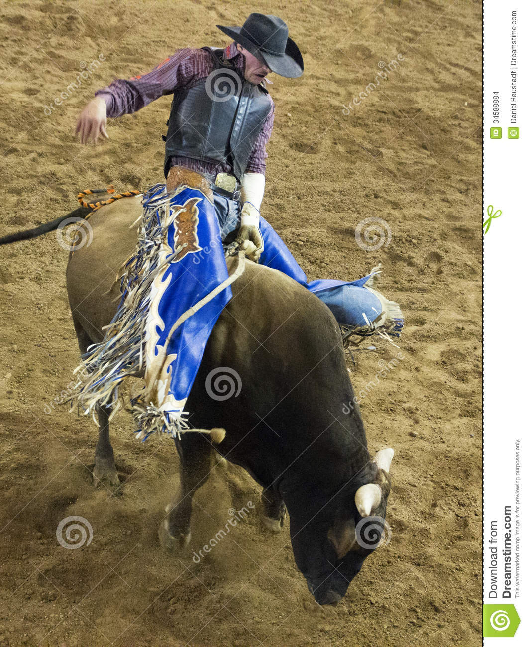 Best Used Family Car >> Professional Bull Riding Competition Editorial Stock Image ...