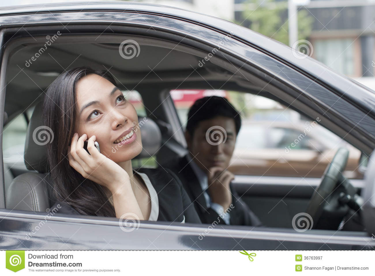 Car People: Professional Business People In Car Stock Image