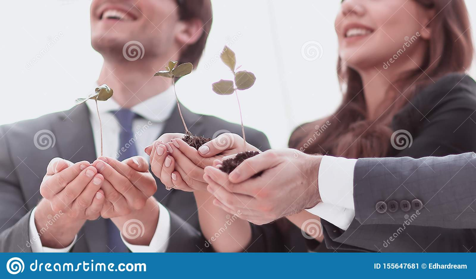 Professional business team showing the first sprouts